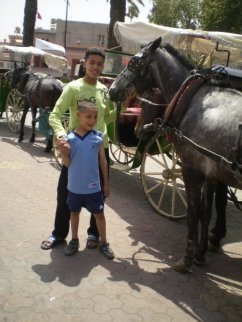 Family Trip to Marrakesh 2 - Choosing a Carriage